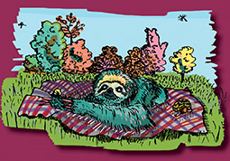 Slow Things Sloth